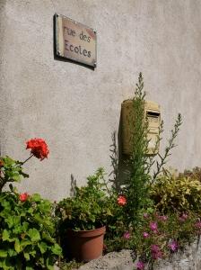 Fleurs 2 Saint Pierreville
